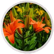Tiger Lily Blossoms Round Beach Towel