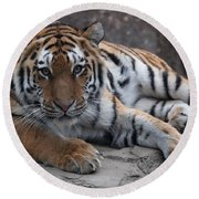 Tiger Love Round Beach Towel