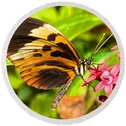 Tiger Mimic Butterfly Round Beach Towel