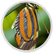 Tiger Mimic Queen Butterfly Round Beach Towel
