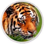 Tiger Painting Round Beach Towel
