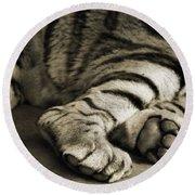 Tiger Paws Round Beach Towel