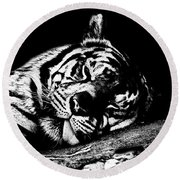 Tiger R And R Black And White Round Beach Towel
