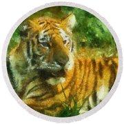 Tiger Resting Photo Art 02 Round Beach Towel