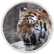 Tiger Smile Round Beach Towel