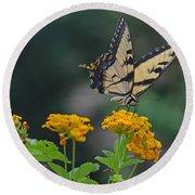 Tiger Swallowtail And Lantana Round Beach Towel