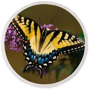 Tiger Swallowtail Butterfly Round Beach Towel