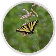 Tiger Swallowtail Round Beach Towel