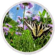 Tiger Swallowtail On Pincushion Flowers Round Beach Towel