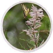 Tiger Swallowtails Round Beach Towel