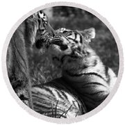 Tigers Kissing Round Beach Towel