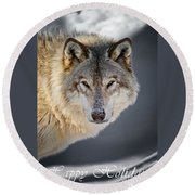 Timber Wolf Holiday Card 21 Round Beach Towel