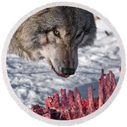 Timber Wolf Pictures 552 Round Beach Towel
