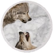 Timber Wolf Pictures 775 Round Beach Towel