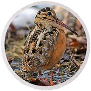 Timberdoodle The American Woodcock Round Beach Towel