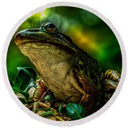 Time Spent With The Frog Round Beach Towel