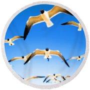 Timeless Seagulls Round Beach Towel