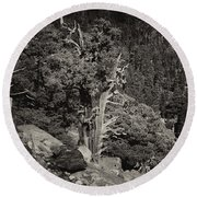 Tioga Pass Road Sepia Round Beach Towel