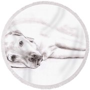 Tired Labrador Round Beach Towel