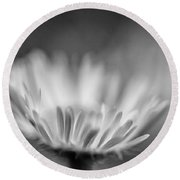 Tis But A Dream 2 Monochrome Round Beach Towel