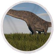 Titanosaurus Standing In Swamp Round Beach Towel