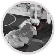 To Know A Pit Is To Love Round Beach Towel