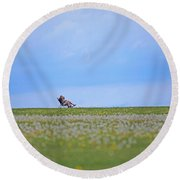 To Relax Round Beach Towel