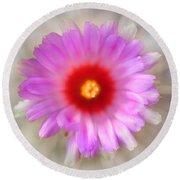 To Return To Innocence. Cactus Flower Round Beach Towel by Jenny Rainbow
