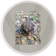 Toad Of Toad Hall Round Beach Towel