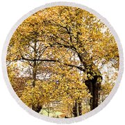 Tombs Under Oaktree Round Beach Towel