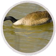 Tongue In Goose I Round Beach Towel