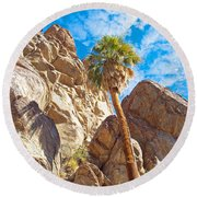 Top Of A Palm Near Top Of Andreas Canyon-ca Round Beach Towel
