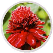 Torch Ginger Single  Round Beach Towel