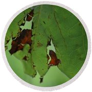 Torn Leaf Abstract Round Beach Towel