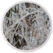 Toronto Ice Storm 2013 - Pale Frozen Grasses  Round Beach Towel