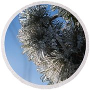Toronto Ice Storm 2013 - Pine Needle Flowers In The Sky Round Beach Towel