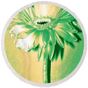 Touch Of Turquoise Zinnia Round Beach Towel