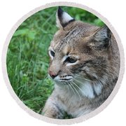 Tough Cat Round Beach Towel