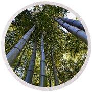 Towering Bamboo Round Beach Towel