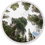 Towering Pine Trees Round Beach Towel