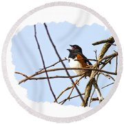 Towhee Singing On Top Of Mountain Round Beach Towel