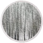 C And O Towpath Blizzard Round Beach Towel