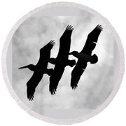 Triple Brown Pelicans Round Beach Towel