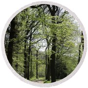 Track Trough The Woods Round Beach Towel