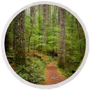 trail to Lower Lewis Falls Round Beach Towel