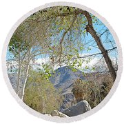 Trailhead Area In Andreas Canyon In Indian Canyons-ca Round Beach Towel