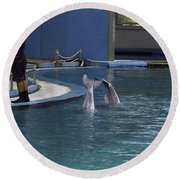 Trainer And 2 Dolphins At The Underwater World In Sentosa Round Beach Towel