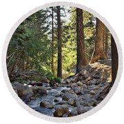 Tranquil Forest Round Beach Towel