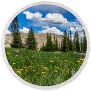 Trappers Lake Meadow Round Beach Towel