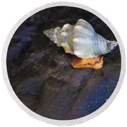 Traveling At A Snail's Pace Round Beach Towel